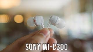 Sony WI-C300 Review   Wireless In-Ear Headphones