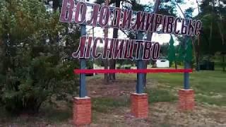 видео Краснокутский дендропарк