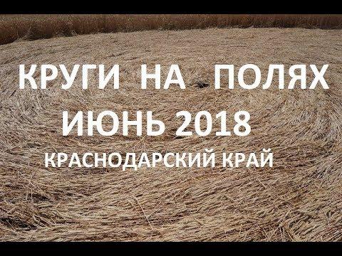 Картинки по запросу Краснодарский край круги на полях 2018