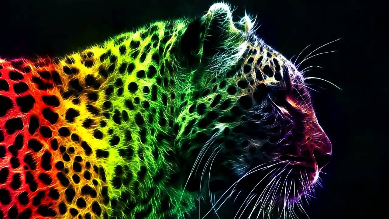 colorful leopard backgrounds artistic - photo #5