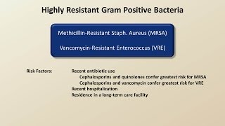 Antibiotics for Gram Positive Infections (Antibiotics - Lecture 4)
