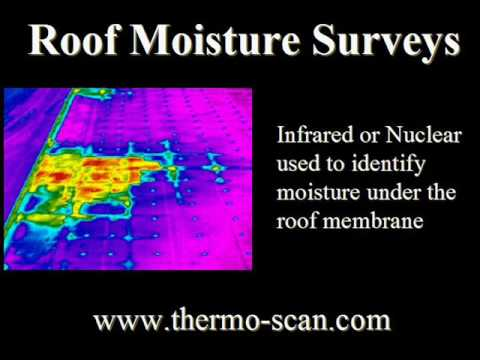 Infrared Inspection By Thermo Scan Electrical Scan Roof