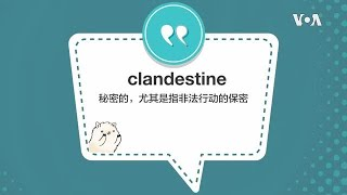 学个词 - clandestine
