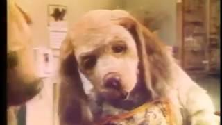 Gravy Train ad, 1975