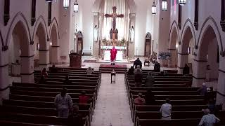 11.24.20 Daily Mass at St. Joseph's