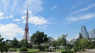 Япония влог. Солнечный день и вело прогулка по Токио.