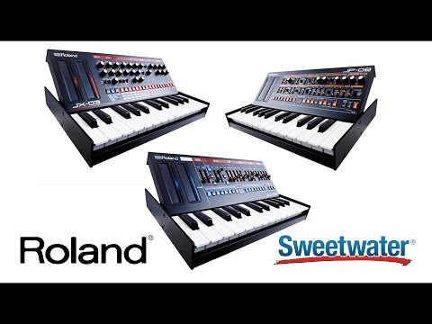 Roland K-25m Boutique Series Keyboard Unit | Sweetwater
