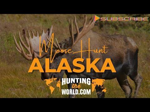Alaskan Yukon Moose Hunt | Hunting the World | 2021