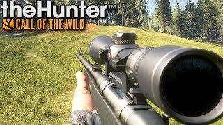 Ostatnie polowanie | theHunter: Call of the Wild (#25)