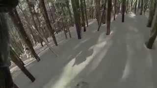 Snowboarding through Tight Colorado Trees and Deepish Powder