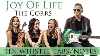 How To Play JOY OF LIFE by The Corrs - Tin whistle tabs/notes playalong