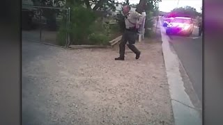 Police video shows man's arrest in road rage incident