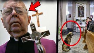 Questo cane ogni Domenica entra in chiesa durante la messa, il motivo ti farà commuovere..
