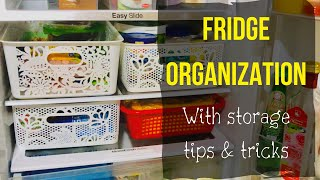 Fridge Organization / Tips for storing green leafy vegetables, green chillies & banana for long time