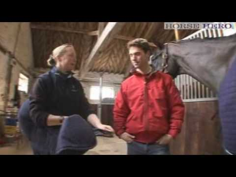 Preparing horses for travel