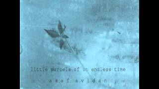 Asaf Avidan - Little parcels of an endless time (GOLD SHADOW)