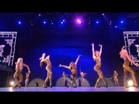 MICHAEL FLATLEY CELTIC TIGER Celtic Kittens