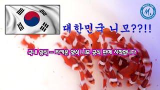 메이드 인 코리아! - 대한민국 양식 니모 타키온 니모…
