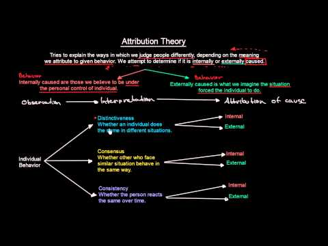 Attribution Theory | Organisational Behavior | MeanThat