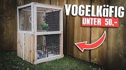 Vogelkäfig für 50€ selber bauen - Hubert zieht ein