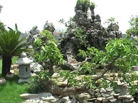 Cây cảnh nhà vườn Thái Lan