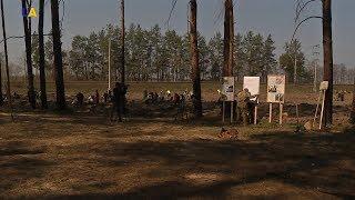 На околиці Києва заклали ділянку соснового лісу