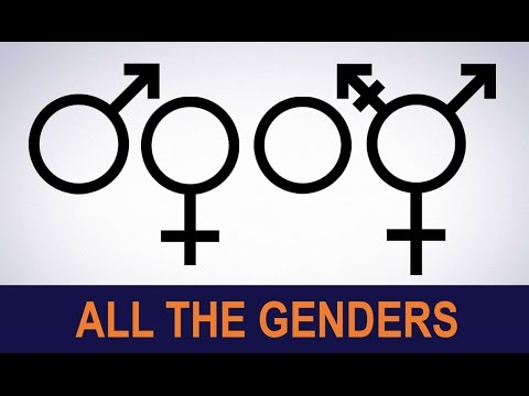 Can You Name All The Genders? | 1001 THINGS