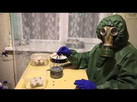 Ruso crea homunculos ( 3er experimento)