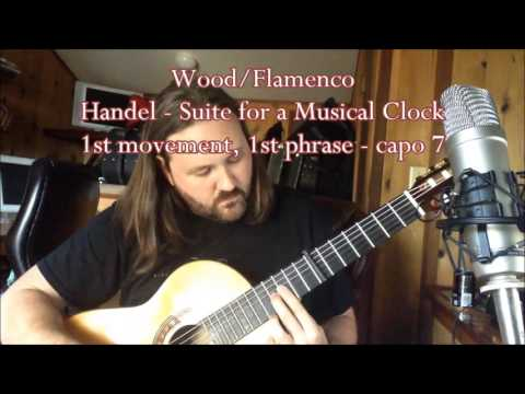 Classical vs. Flamenco guitar: A tonal comparison of two guitars