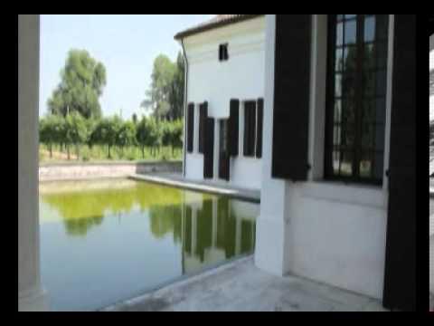 Una nuova stella nel mondo del vino: Luciano Benetton