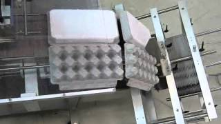 COMPACT 600 : EGGS CARTON MACHINE Thumbnail