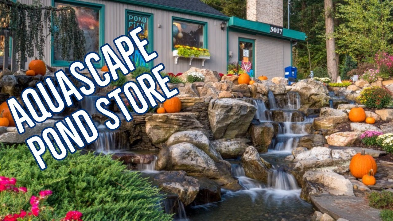 Outdoor Living Aquascape Pond Supply Store Behind The Scenes Youtube