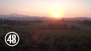 Drone captures more than vineyard beauty