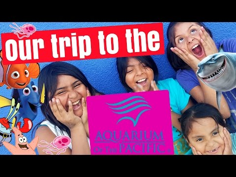 OUR FUN TRIP TO THE AQUARIUM OF THE PACIFIC