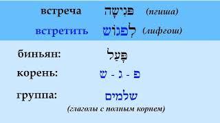 Глаголы в иврите ВСТРЕТИТЬ / ВСТРЕТИТЬСЯ  (спряжение, примеры употребления)