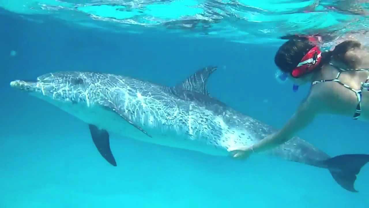 diving malta winter