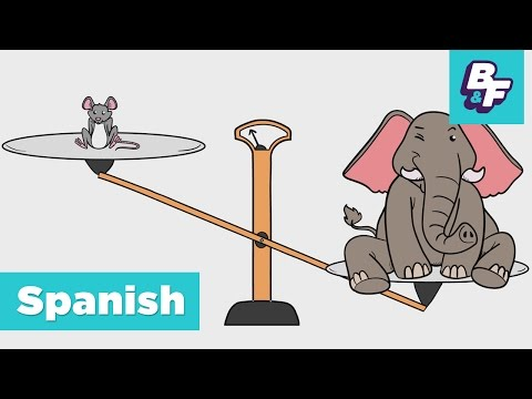 Learn Spanish Opposite Words for Children with BASHO & FRIENDS - Los Opuestos