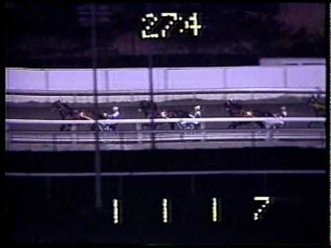 1985 Meadowlands Pace - Nihilator & Bill O'Donnell