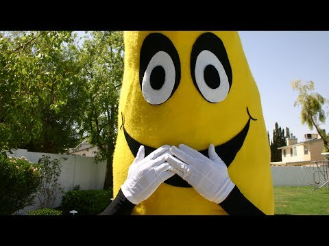Illegal Substance   Banana Song