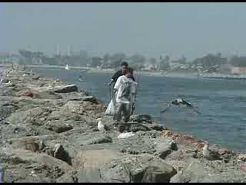 Fishing at seal beach jetty youtube for Seal beach fishing