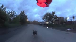 Перцовый баллончик Контроль против Собак - 9. Перец. Город глазами велосипедиста #264