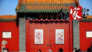 [我有传家宝]百姓最喜爱的沈阳故宫文物第五名——绢本彩绘将军门神| CCTV