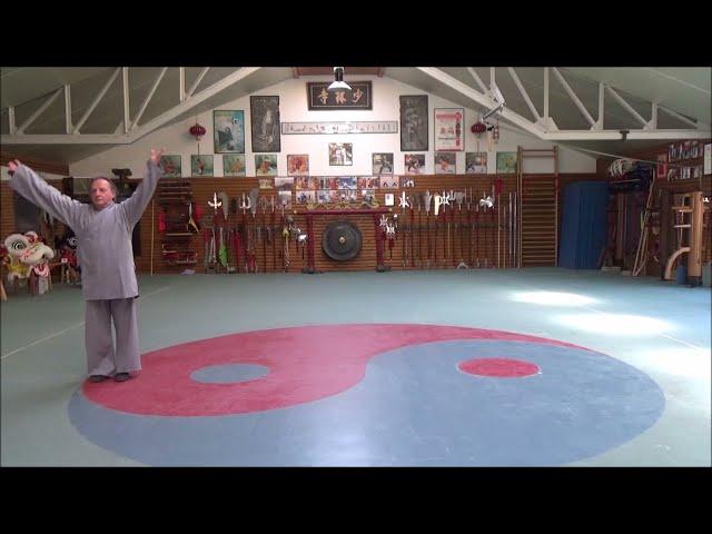 Grandmaster Walter Toch 18 hands of Shaolin