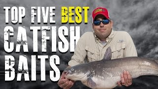 Top 5 Best Catfish Baits Made Simple - Blue, Channel, Flathead Catfish