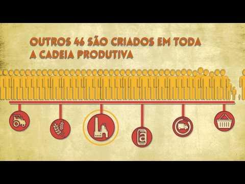 Ambev - O setor de bebidas e a economia brasileira