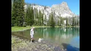 Catching Large Cutthroat Trout Remote Alpine Lake Sun Valley Idaho