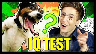Testuju IQ Svého Psa! | Martin