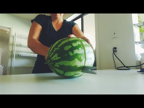 Watermelon Harvest from our Desert Garden! Are they ripe?