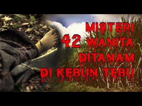 Download PEMBUNUH PALING SADIS DI INDONESIA [MISTERI KEBUN TEBU]