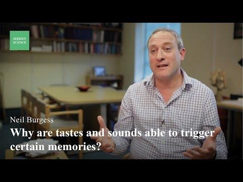 Episodic Memory — Neil Burgess